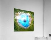 Dream Art XX Surreal Eye Lake  Acrylic Print
