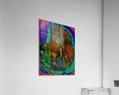 Phaldomi  Acrylic Print