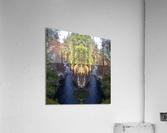 Sacred Deer  Acrylic Print