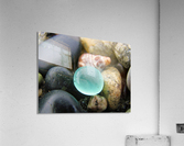 Sea Glass and Seashell  Acrylic Print