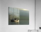 Basking  Acrylic Print
