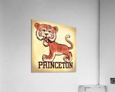 Vintage Fifties Princeton Tiger Remix Art  Acrylic Print