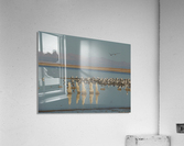 The Salton Sea  Acrylic Print