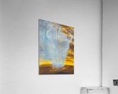 SPIRITCHASER  Acrylic Print
