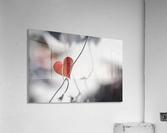 Red heart shaped leaf  Acrylic Print