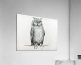 Qwl  Acrylic Print