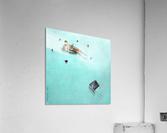 Sharks  Impression acrylique