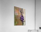 Bee Love  Acrylic Print