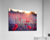 Beautiful Sunset poppy flowers  Acrylic Print