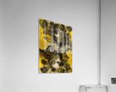 Movement with Venus  Acrylic Print