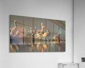 Love At First Sight  Acrylic Print