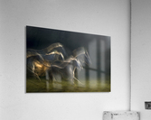 echoing in motion  Acrylic Print