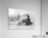 Little-Jumbo  Acrylic Print