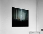***  Acrylic Print