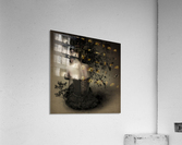 Night scented girl  Acrylic Print