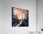 Rhapsody  Acrylic Print