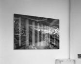 Spectrum of Light  Acrylic Print