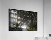 DARK HEDGES  Acrylic Print