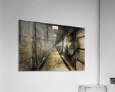 LaCrypt  Acrylic Print