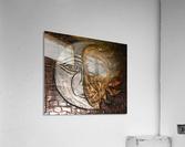 Fusion  Acrylic Print
