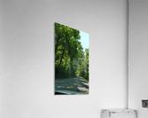 The Countryside  Acrylic Print