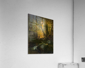 Rivers, Cottage Interiors and Ponds  Acrylic Print