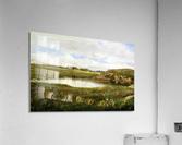 Freshwater Pond in Summer Rhode Island  Acrylic Print