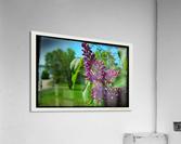 Purple Flowers  Impression acrylique