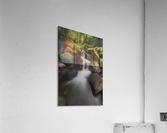 Ruckel Creek; Oregon, United States of America  Acrylic Print