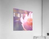 Rödklöver  Acrylic Print