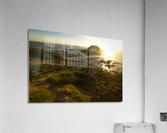 Phillip Island  Impression acrylique