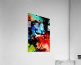 MPS-018  Acrylic Print
