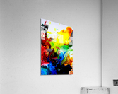 MPS-020  Acrylic Print