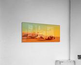 A halt in the desert  Acrylic Print