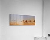 Caravanes traversant le desert  Acrylic Print