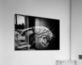 ANGER  Acrylic Print