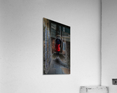 Girl with red dress  Acrylic Print