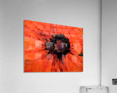 poppies will make you sleep  Acrylic Print
