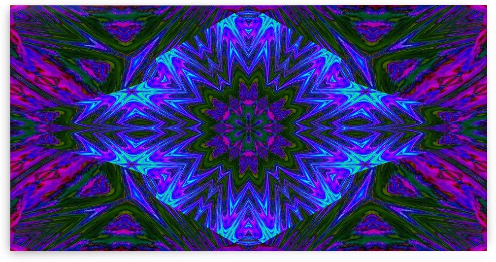 Night Flower 2 by Sherrie Larch