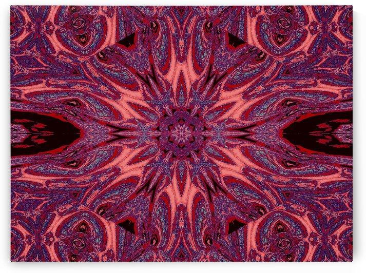 Metamorphosis Rose 2 by Sherrie Larch