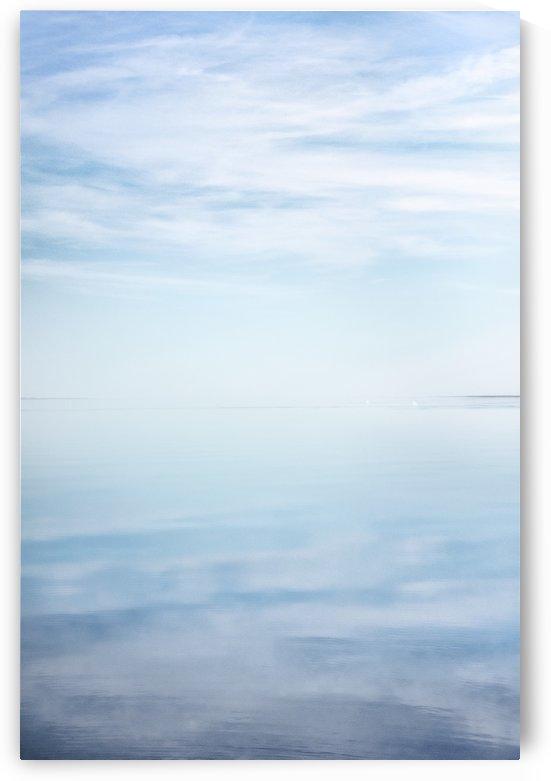 The Salton Mirror by Gina Lis