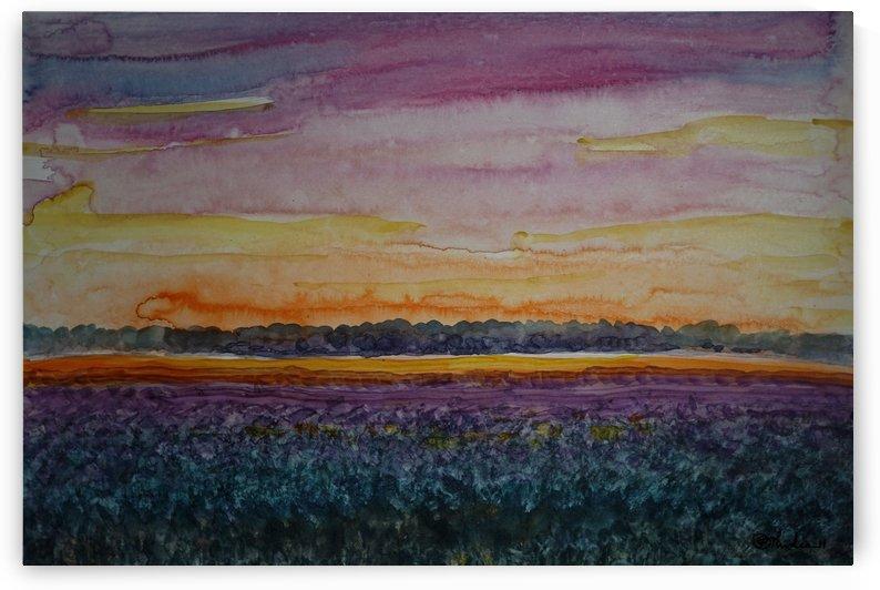 Sunset by Pracha Yindee