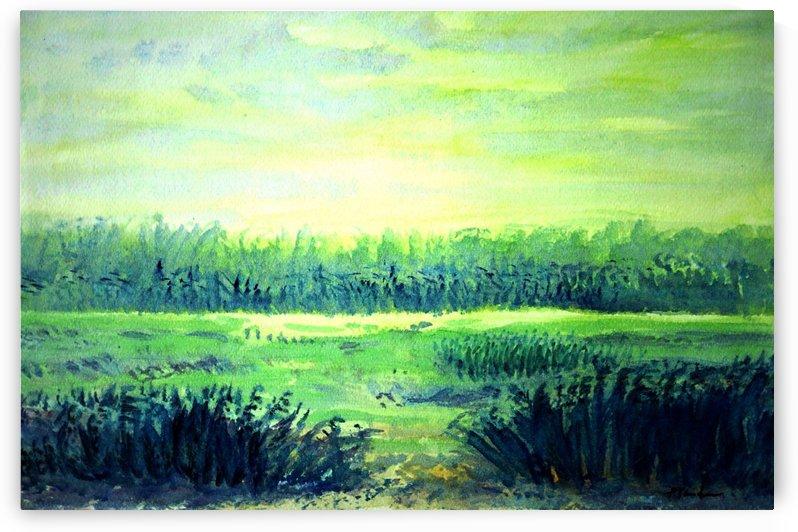 The Fields 4 by Pracha Yindee