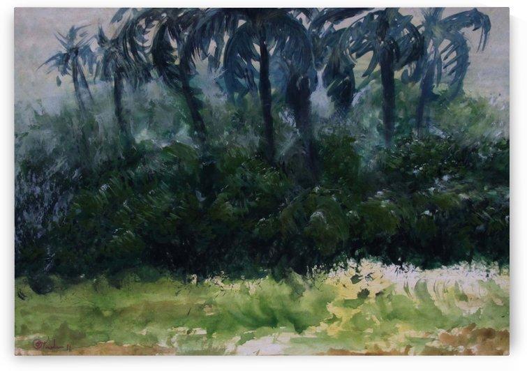 Coconut Trees by Pracha Yindee