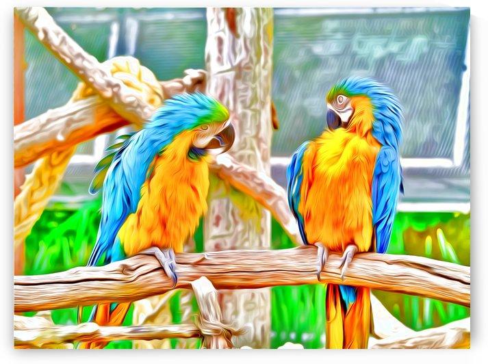BirdsTalking by Chazzi R  Davis