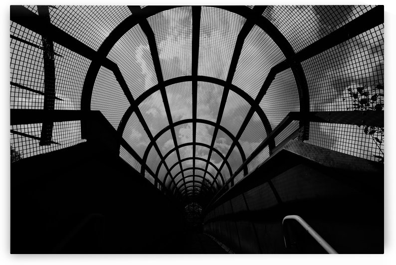 Enclosed by Andy Jamieson