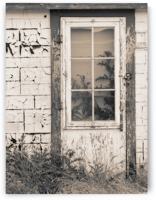Abandoned House, Robsart, Sk, Canada by PacificStock