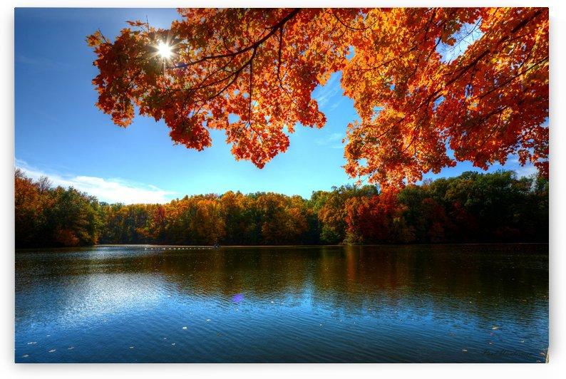 Autumn Colors by Paul Winterman