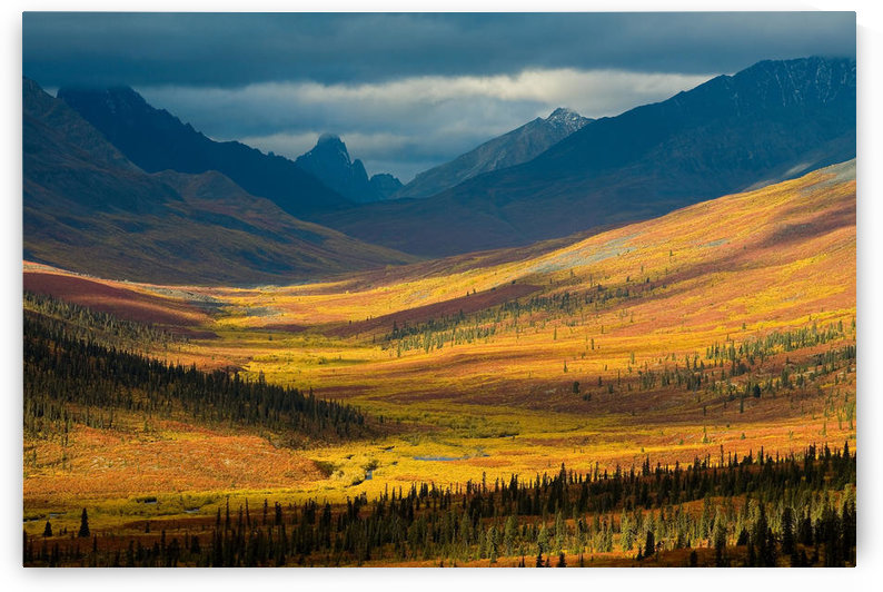North Klondike River Valley, Tombstone Territorial Park, Yukon by PacificStock