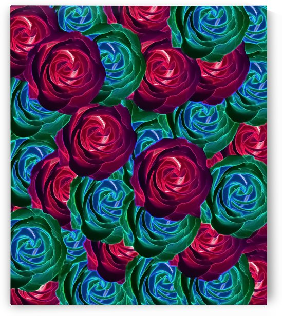 closeup blooming roses in red blue and green by TimmyLA